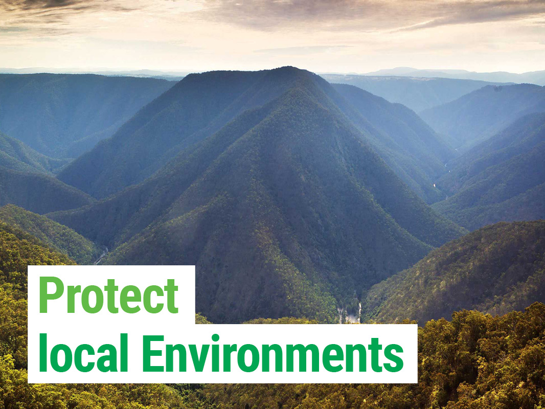The Greens protect local environments