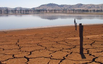 New report reveals the impacts for Australia if we don't act to safeguard the climate