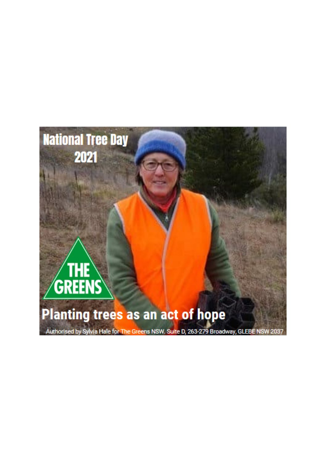 Planting trees as an act of hope