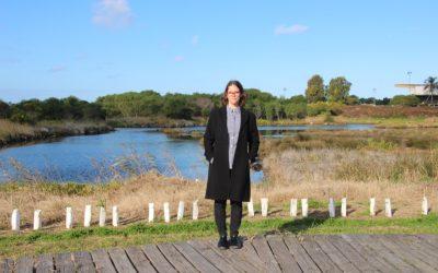 Protect Bayside's beautiful wetlands